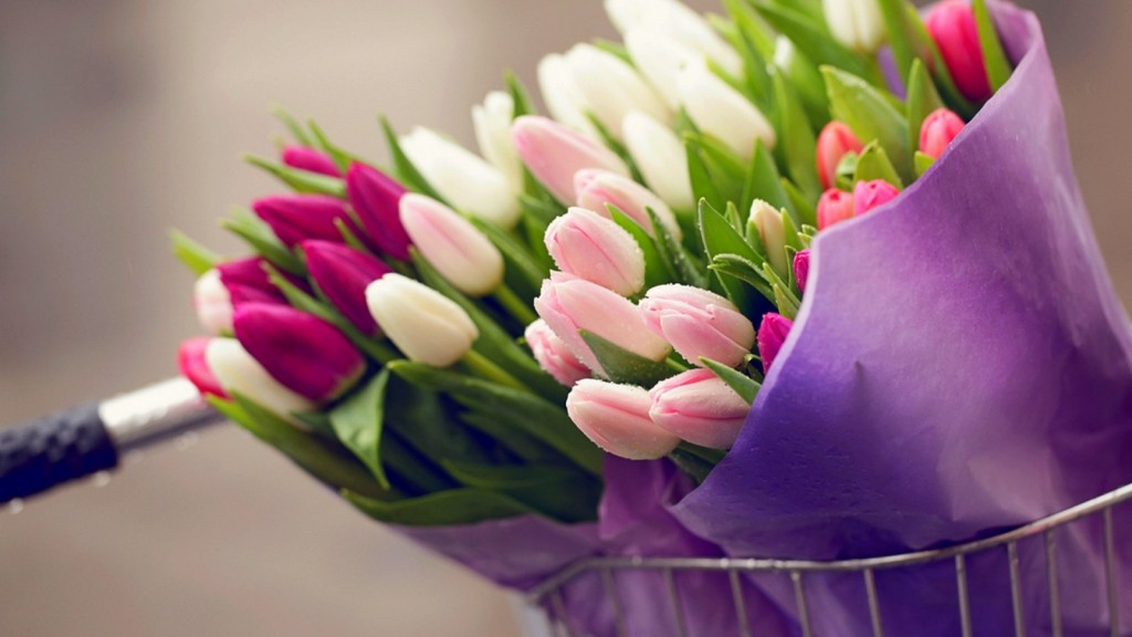flowers-bouquet-tulips-drops