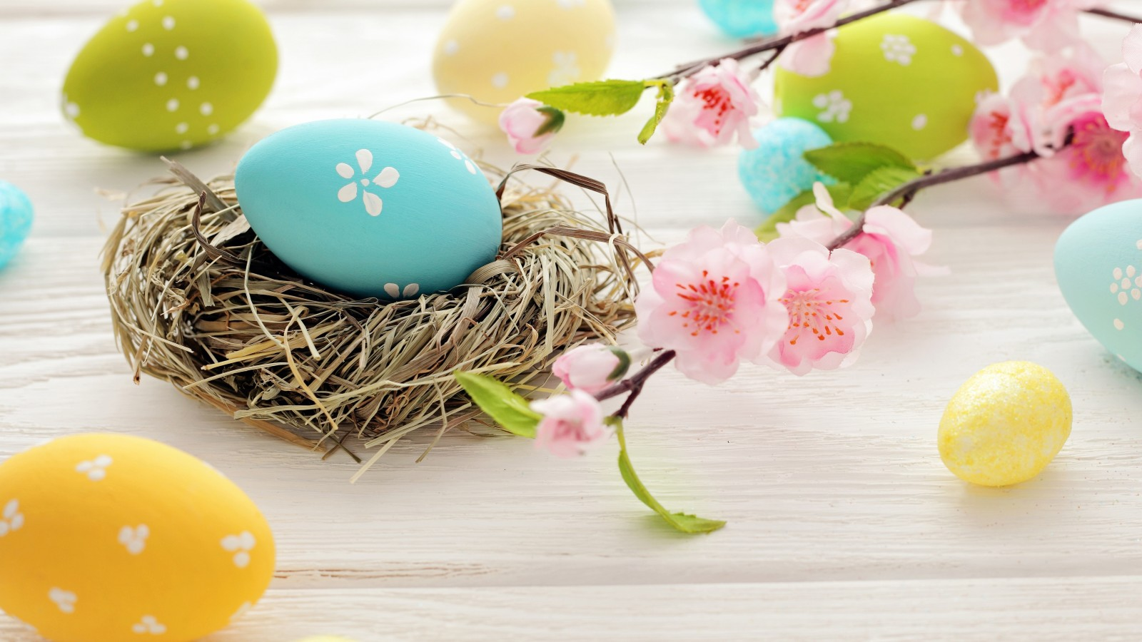 easter-eggs-spring-flowers-3791
